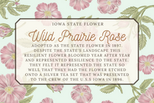 Load image into Gallery viewer, Iowa State Map Post Card