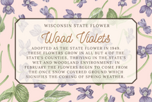 Load image into Gallery viewer, Wisconsin State Map Postcard