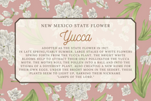 Load image into Gallery viewer, New Mexico State Map Foleded Card