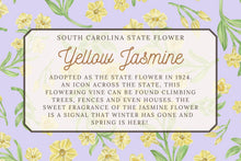 Load image into Gallery viewer, Yellow Jasmine Scarf - South Carolina State Flower