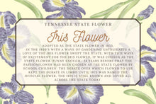 Load image into Gallery viewer, Iris Floral Illustration Scarf - Tennessee State Flower Design