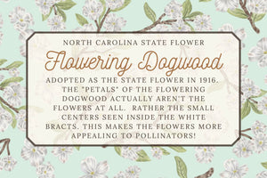 Flowering Dogwood Illustrated  Kitchen Towel - Virginia State Flower - North Carolina Flower