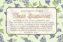 Load image into Gallery viewer, Texas State Map Art Print