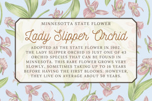 Lady Slipper Orchid Floral Scarf - Minnesota State Flower Design