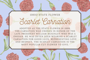 Scarlet Carnation Tea Towel