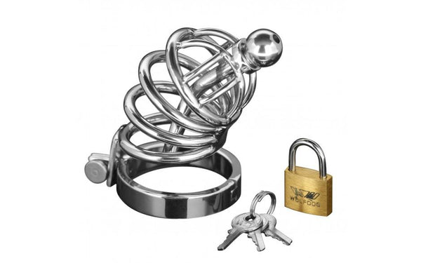 Adult Toys - Asylum 4 Ring Locking Chastity Cage