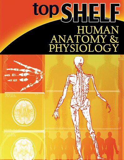 TopShelf Human Anatomy & Physiology, Science, Biology, Physics, Chemistry, Earth Science, Teaching Resources, Poster, Bright Education Australia