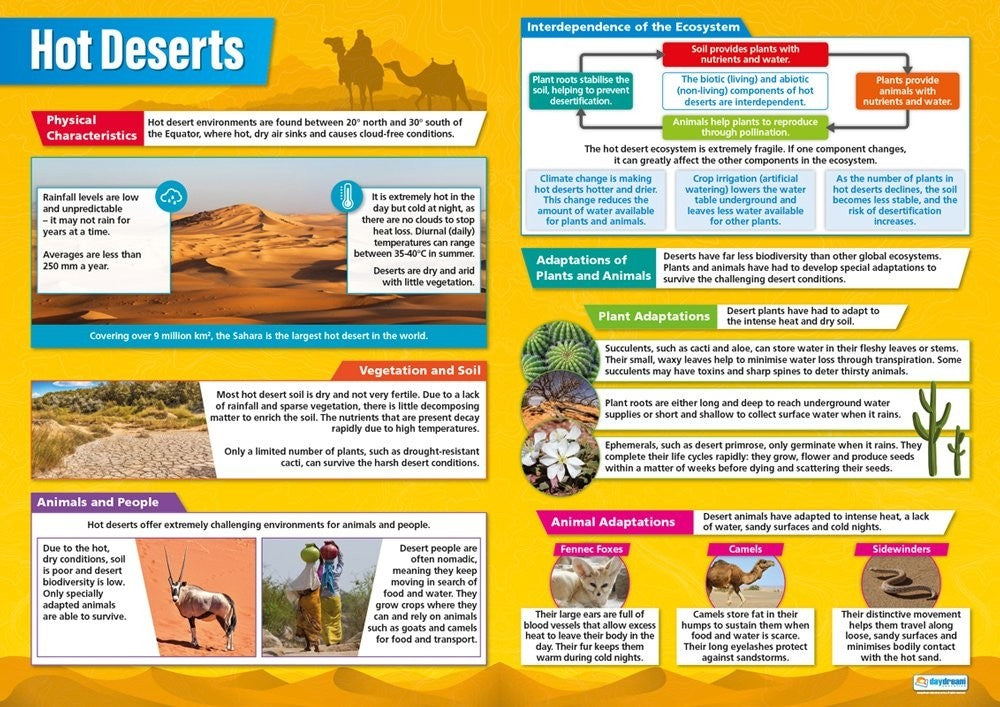 Bright Education Australia, Teacher Resources, Poster, A1 Poster, Geography, Climate, Earth Science, Weather, Climate Change, Biomes, Plants, Animals, Global Ecosystems, Hot Deserts