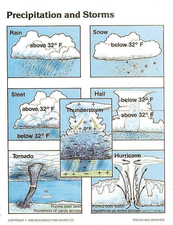 Bright Education Australia, Teacher Resources, Poster, Teaching Poster Set, Geography, Climate, Earth Science, Predicting Weather, Weather, Climate Change, Cloud Formations