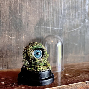 blue blinking doll eye encased in a ball of moss, sat on wooden background