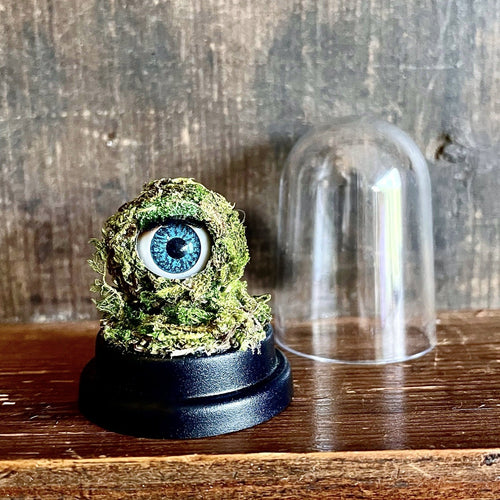 Moss covered doll eye sat on black plastic base next to dome.