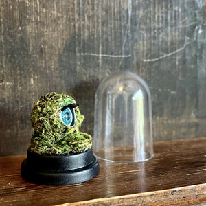 green moss ball with blue doll eye, sat on dark wooden shelf