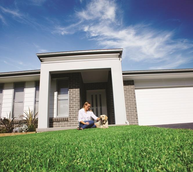 Top-Dressing Your Lawn in the Warmer Months