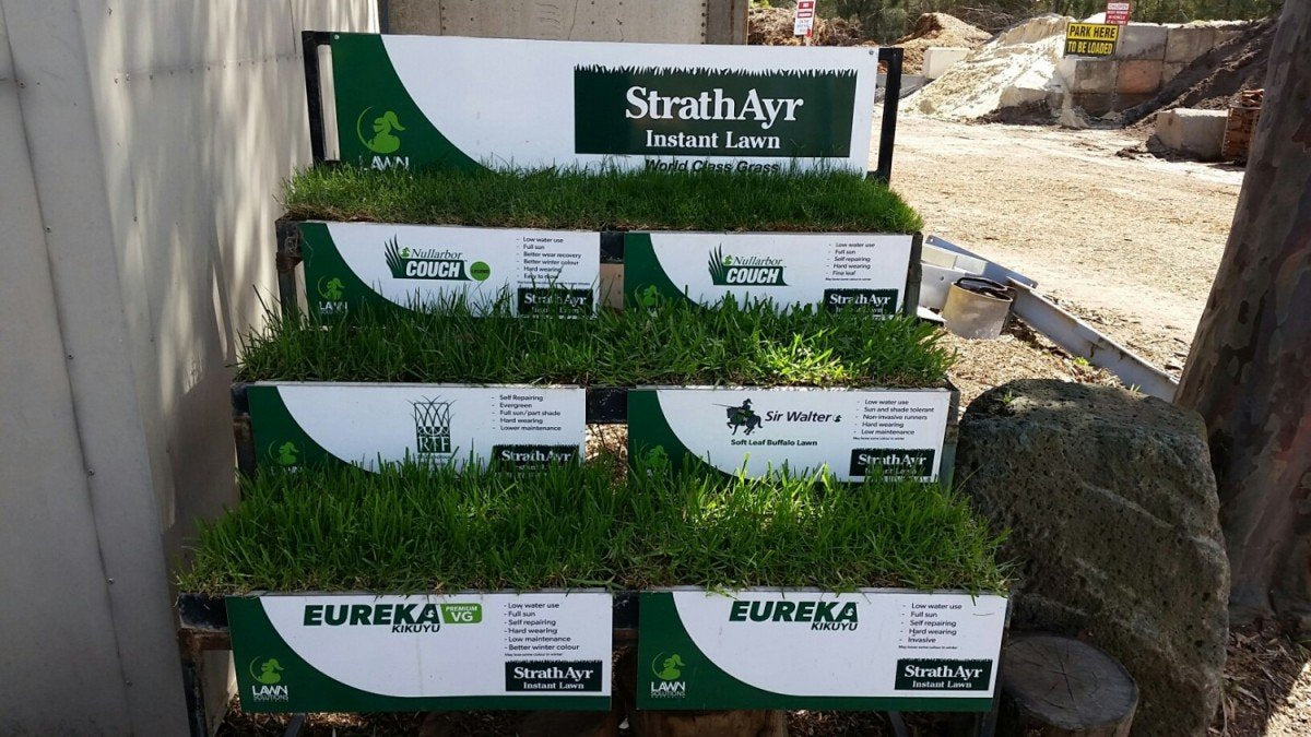 Instant Turf Review