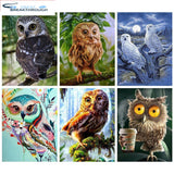 HUACAN Full Square Diamond Painting Owl 5D Diamond Embroidery Animals Picture Of Rhinestone DIY Diamond Mosaic Birds Decor Home