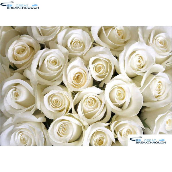 "HOMFUN Full Square/Round Drill 5D DIY Diamond Painting ""White rose flower"" 3D Diamond Embroidery Cross Stitch Home Decor A18516"