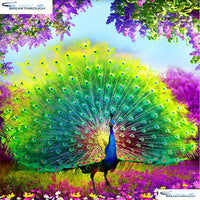 "HOMFUN Full Square/Round Drill 5D DIY Diamond Painting ""animals peacock"" 3D Embroidery Cross Stitch 5D Decor Gift A00652"