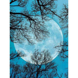 "Full Square/Round Drill 5D DIY Diamond Painting Scenic "" Moon Scenery "" Diamond Embroidery Cross Stitch - Great Breakthrough"