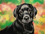 Diamond Painting Animals Full Square Dog 5D Diy Diamond Embroidery Picture Mosaic Rhinestone Handmade Gift Home Decor - Great Breakthrough
