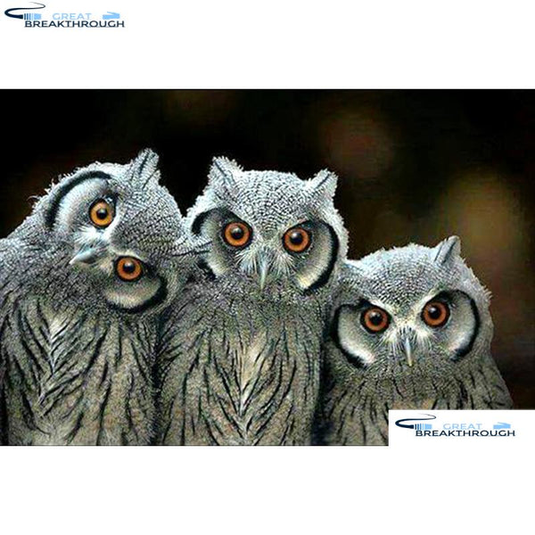 "HOMFUN Full Square/Round Drill 5D DIY Diamond Painting ""Animal owl"" 3D Diamond Embroidery Cross Stitch Home Decor A18551"