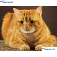 "HOMFUN Full Square/Round Drill 5D DIY Diamond Painting ""Animal cat"" Embroidery Cross Stitch 5D Home Decor Gift A16397"