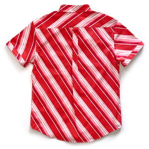 Harvey Shirt in Candy Stripe Print