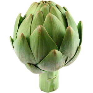 Artichoke Leaf Extract Powder Vegetable, Leaf & Grass Powders Z Natural Foods