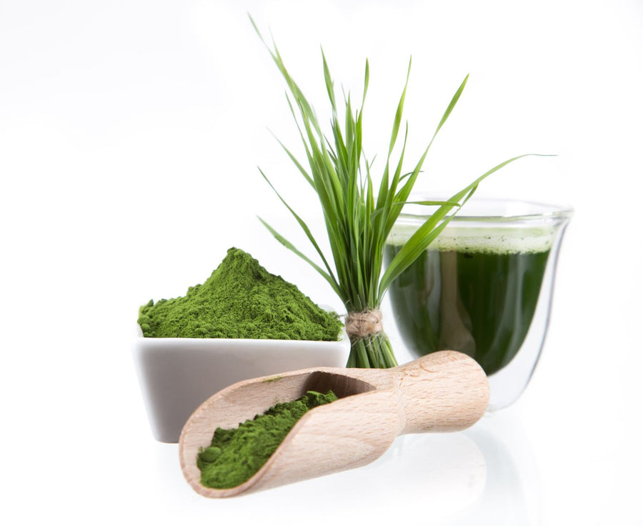 Barley Grass Juice Powder - Organic Vegetable, Leaf & Grass Powders Z Natural Foods