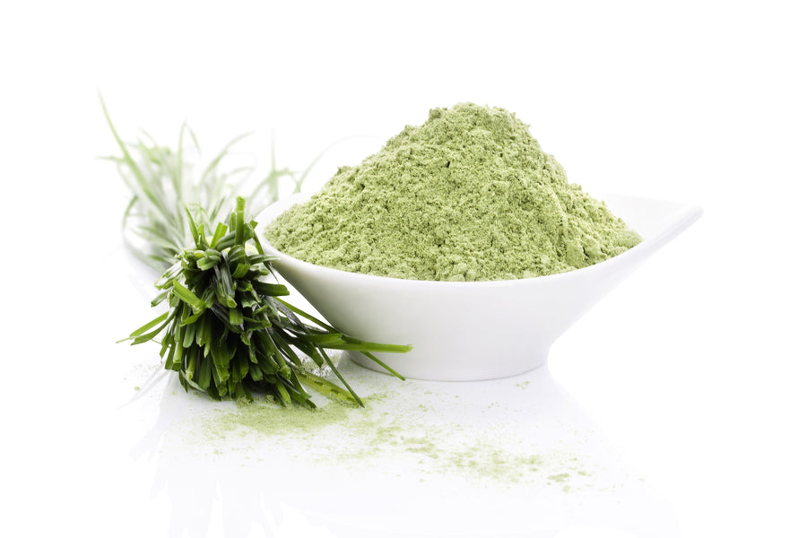 Barley Grass Powder - Organic Vegetable, Leaf & Grass Powders Z Natural Foods