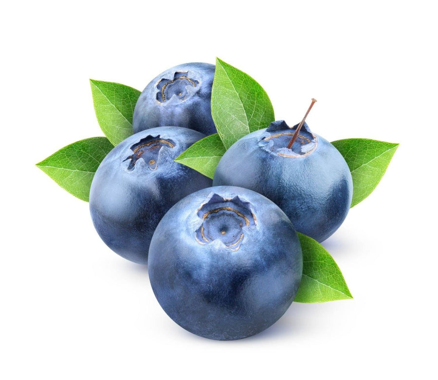 Blueberry Juice Powder - Organic Fruit Powders Z Natural Foods