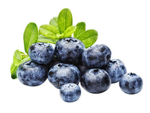 Blueberry Powder - Organic Freeze Dried Fruit Powders Z Natural Foods