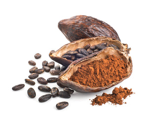 Cacao Powder - Extra Rich - Organic Cacao Z Natural Foods