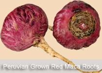 Maca Root Powder (Red) - Organic Raw Herb & Root Powders Z Natural Foods
