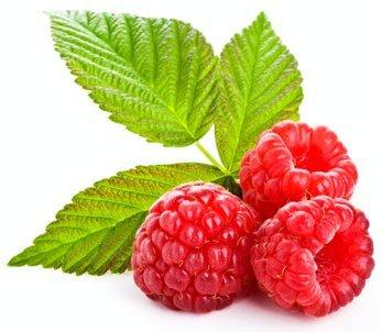 Red Raspberry Powder - Organic Freeze Dried Fruit Powders Z Natural Foods