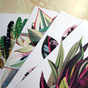 Tropical Prints Pack of 4 | Botanical Art Print Pack