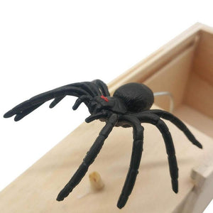Prank Scare Spider-Find Home Supplies
