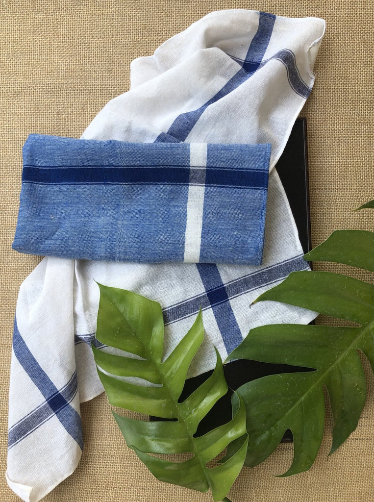 Napkins- Blue/White - Set of 2