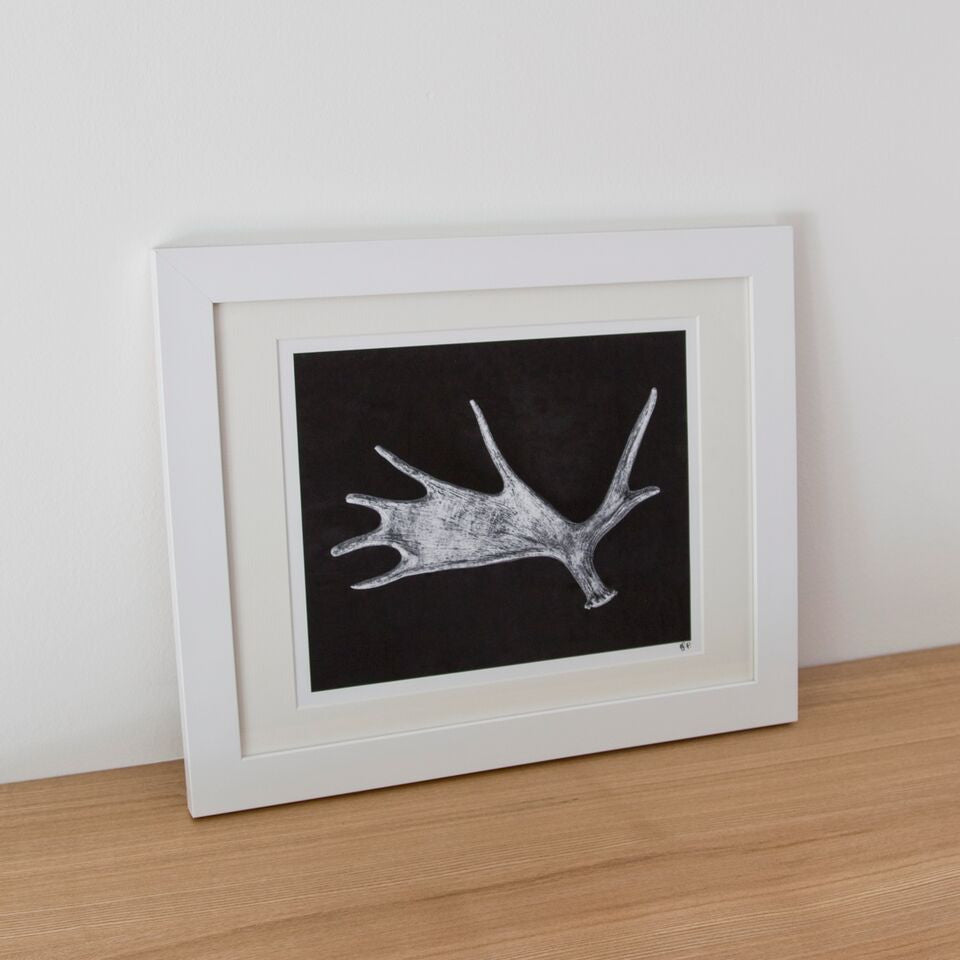 Framed Photograph - Antler