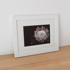 Framed Photograph - Flower