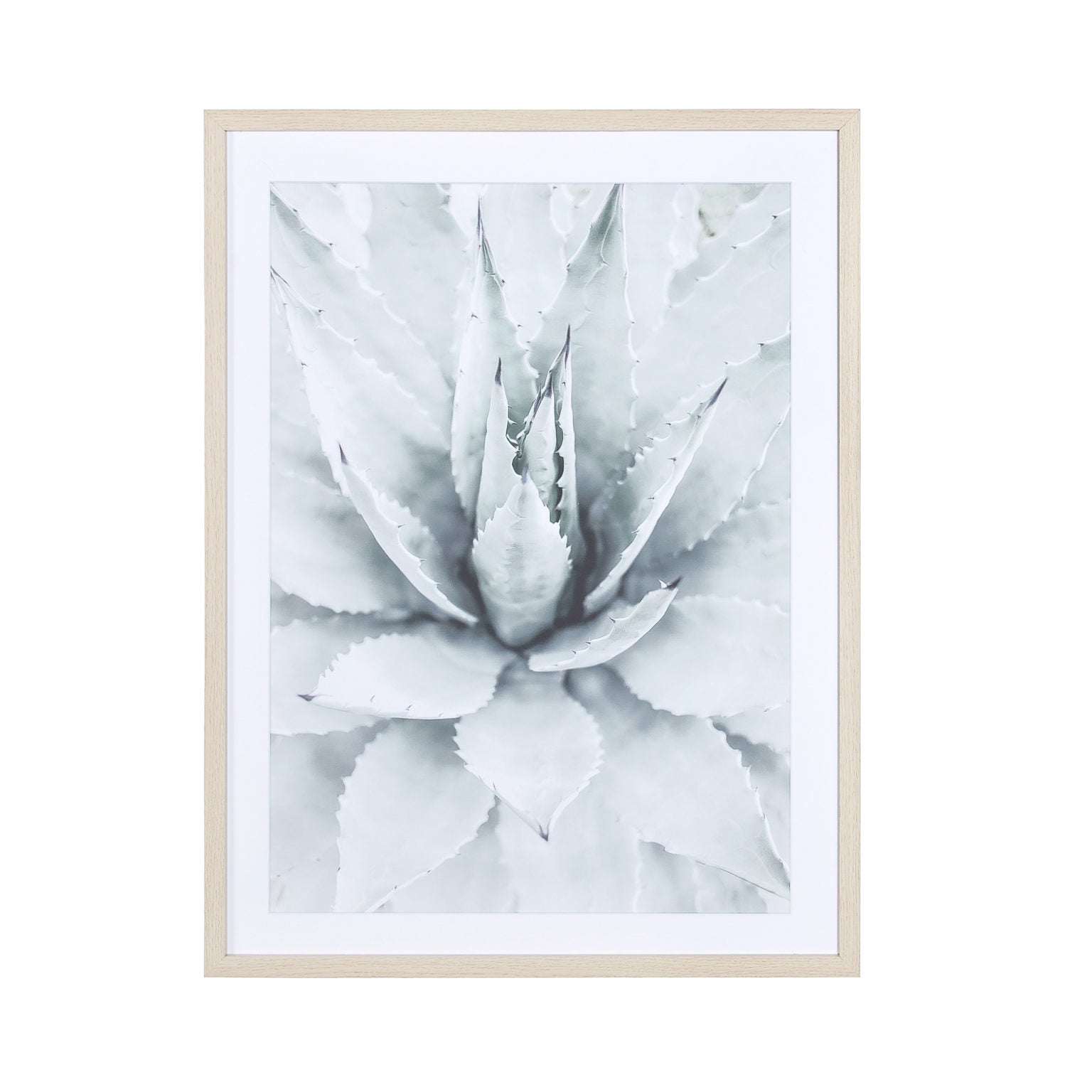 Glass With Wood Frame Bloom A Wall Decor