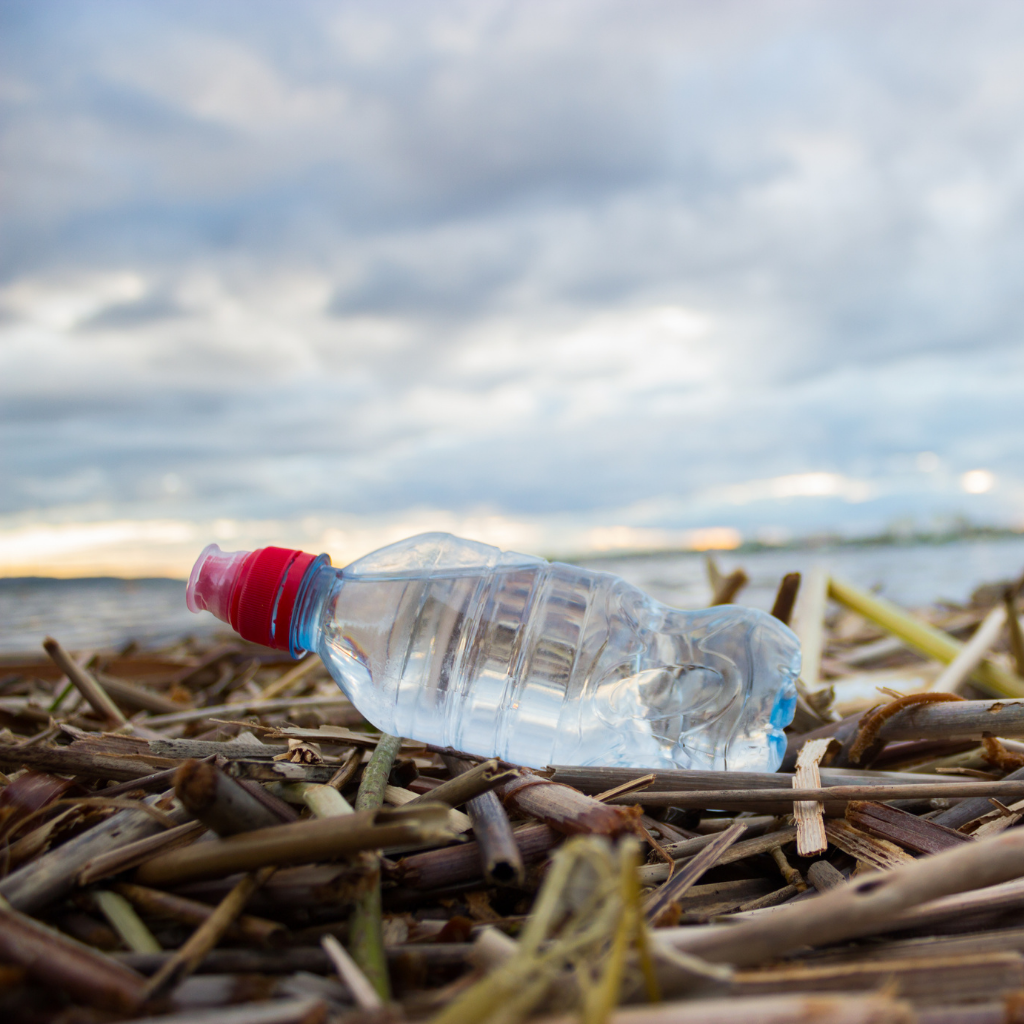 Are Plastic Water Bottles Bad For The Environment?