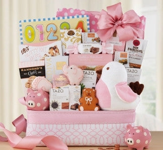 WELCOME HOME BABY GIRL BASKET - FREE SHIPPING!