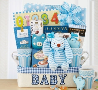 BUNDLE OF JOY - BLUE BASKET - FREE SHIPPING!