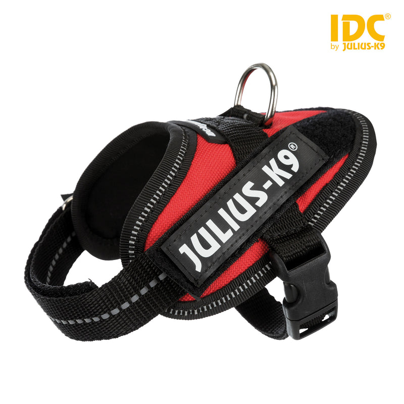 14803 Julius-K9® IDC Powerharness, Baby 1/XS: 29–36 cm/18 mm, red