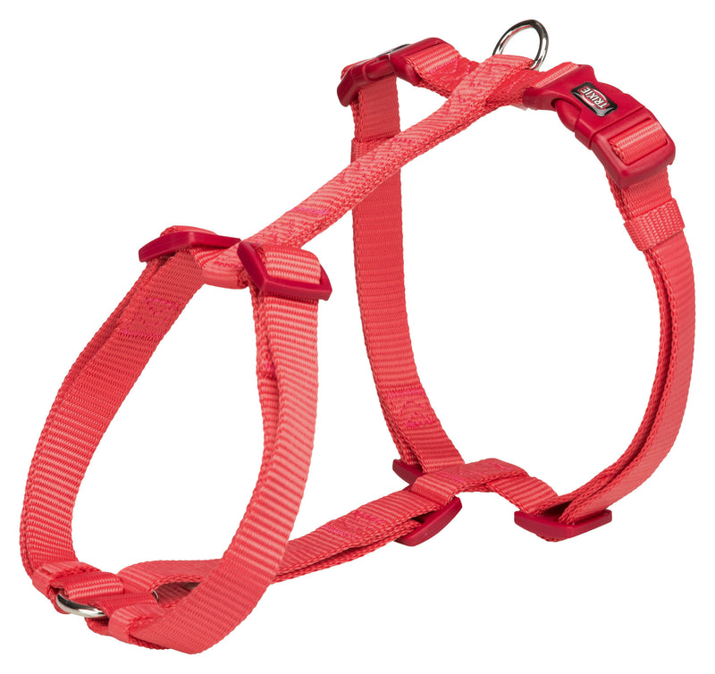 203522 Premium H-harness, L-XL: 75-120 cm/25 mm, coral