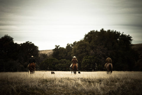 Cowboys, Rancho Llano Seco, Chico, California
