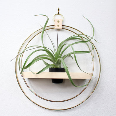 BRAID & WOOD: Plant Shelf & Pot