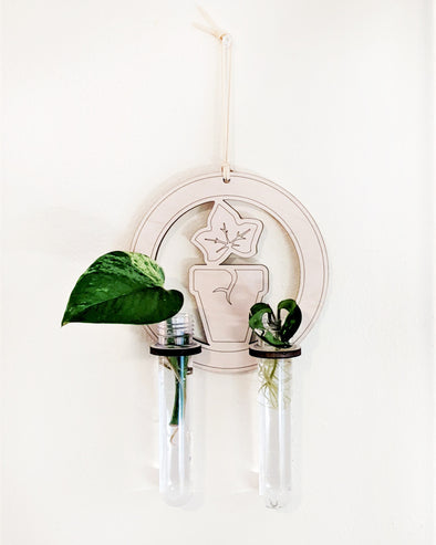 With love, IvyMay: Hang N' Roots Propagation Station