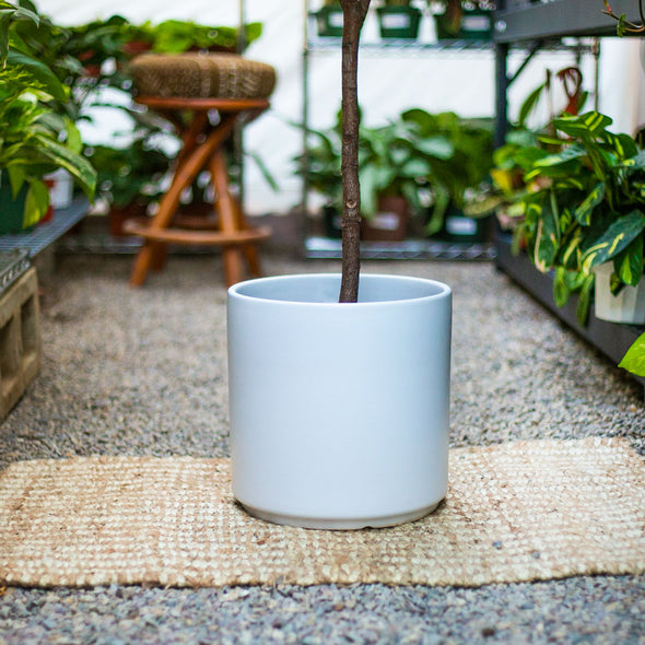 "Peach & Pebble: White 12"" Cylinder Pot"
