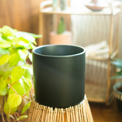 "7"" Peach & Pebble ""Black Pot"""